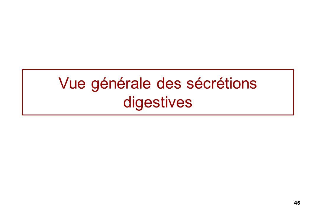 45 Vue générale des sécrétions digestives