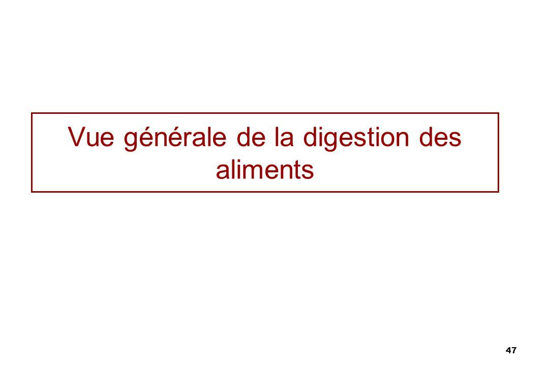 47 Vue générale de la digestion des aliments