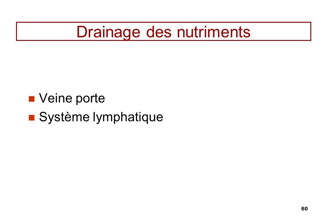 60 Drainage des nutriments Veine porte Système lymphatique