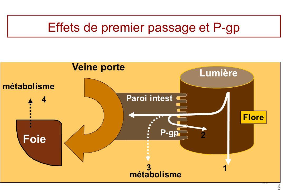 65 65 Effets de premier passage et P-gp Lumière Paroi intest Veine porte Foie métabolisme Flore P-gp 1 2 3 4