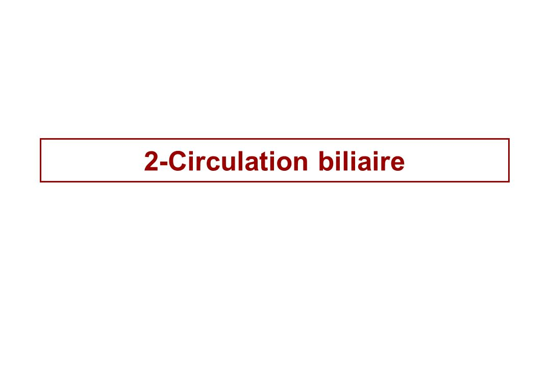 2-Circulation biliaire