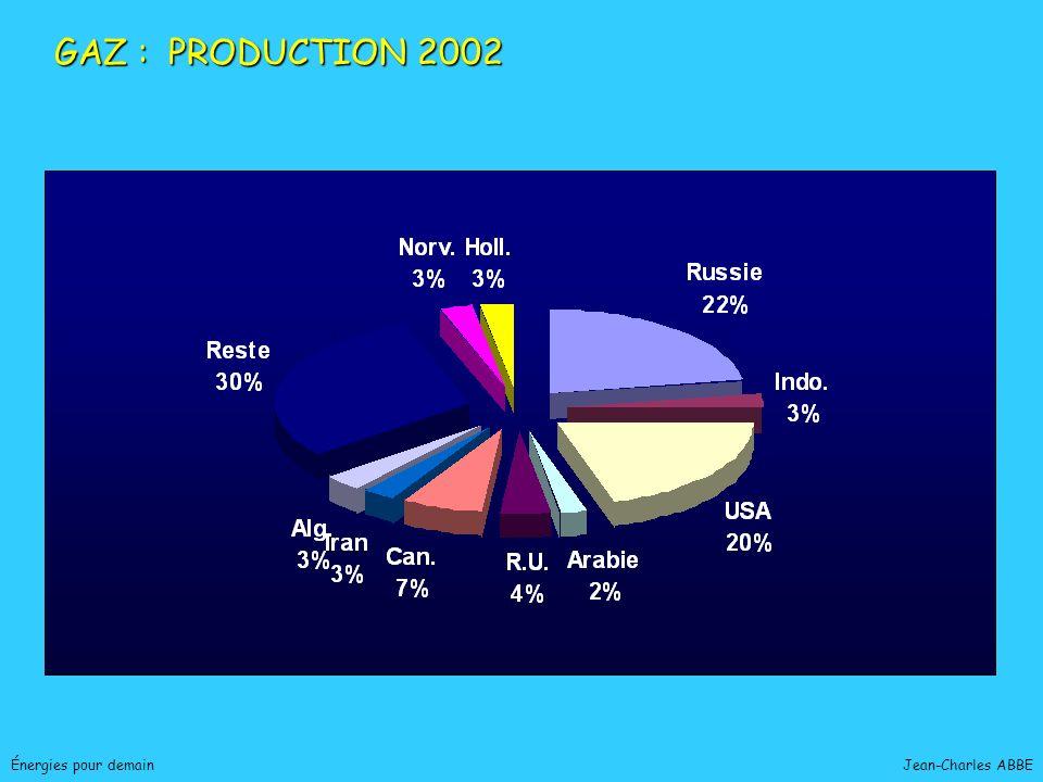 Jean-Charles ABBEÉnergies pour demain GAZ : PRODUCTION 2002