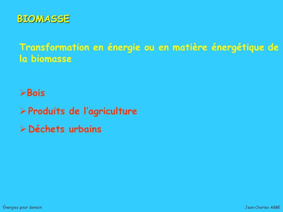 Jean-Charles ABBEÉnergies pour demain BIOMASSE Transformation en énergie ou en matière énergétique de la biomasse Bois Produits de lagriculture Déchet