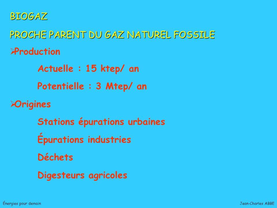 Jean-Charles ABBEÉnergies pour demain BIOGAZ PROCHE PARENT DU GAZ NATUREL FOSSILE Production Actuelle : 15 ktep/ an Potentielle : 3 Mtep/ an Origines