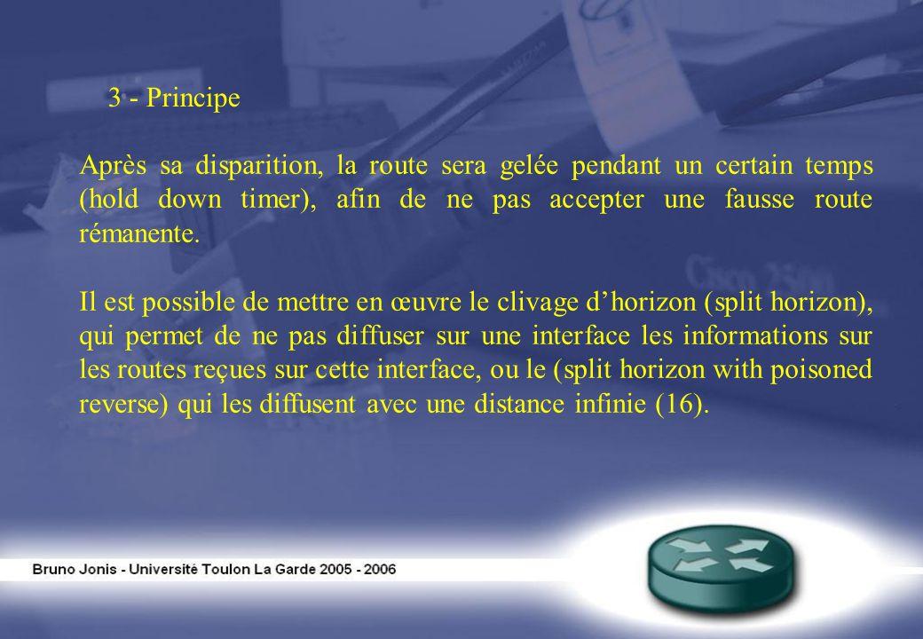3 - Principe Après sa disparition, la route sera gelée pendant un certain temps (hold down timer), afin de ne pas accepter une fausse route rémanente.
