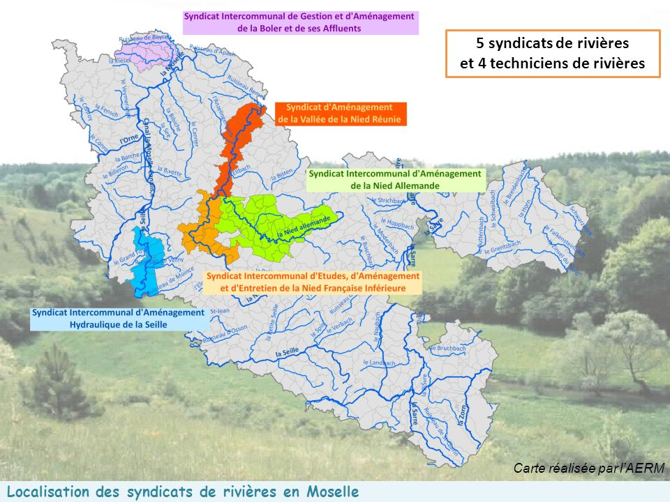 Localisation des syndicats de rivières en Moselle 5 syndicats de rivières et 4 techniciens de rivières Carte réalisée par lAERM