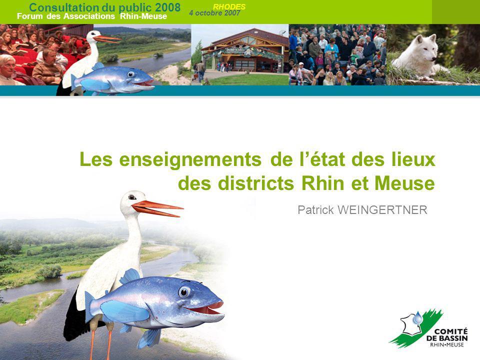 Consultation du public 2008 Forum des Associations Rhin-Meuse 4 octobre 2007 RHODES Les enseignements de létat des lieux des districts Rhin et Meuse P