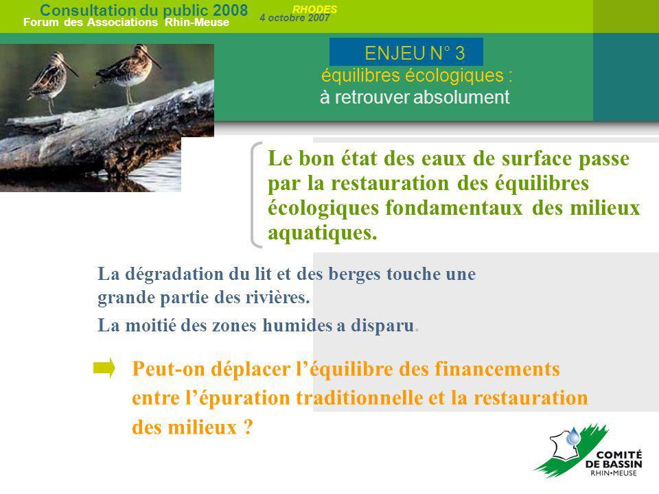 Consultation du public 2008 Forum des Associations Rhin-Meuse 4 octobre 2007 RHODES La dégradation du lit et des berges touche une grande partie des r