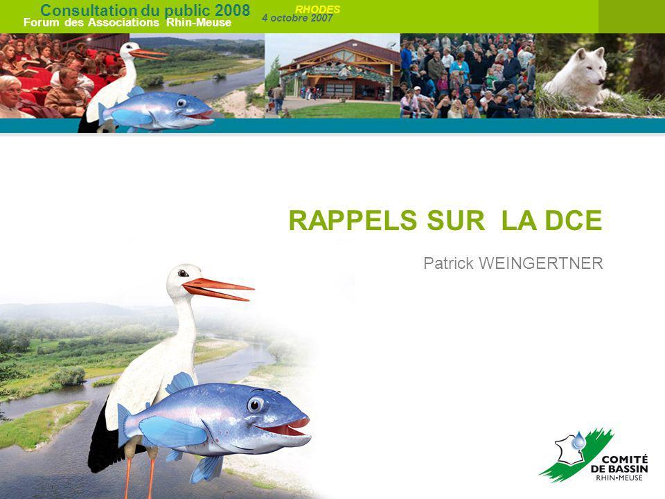 Consultation du public 2008 Forum des Associations Rhin-Meuse 4 octobre 2007 RHODES RAPPELS SUR LA DCE Patrick WEINGERTNER