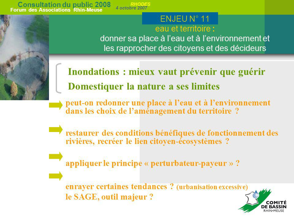 Consultation du public 2008 Forum des Associations Rhin-Meuse 4 octobre 2007 RHODES Inondations : mieux vaut prévenir que guérir Domestiquer la nature