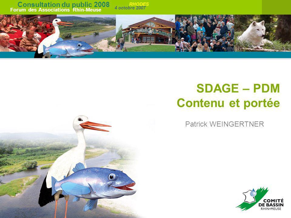 Consultation du public 2008 Forum des Associations Rhin-Meuse 4 octobre 2007 RHODES SDAGE – PDM Contenu et portée Patrick WEINGERTNER