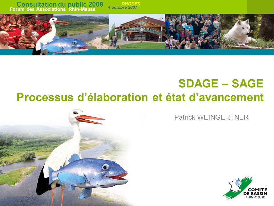 Consultation du public 2008 Forum des Associations Rhin-Meuse 4 octobre 2007 RHODES SDAGE – SAGE Processus délaboration et état davancement Patrick WE