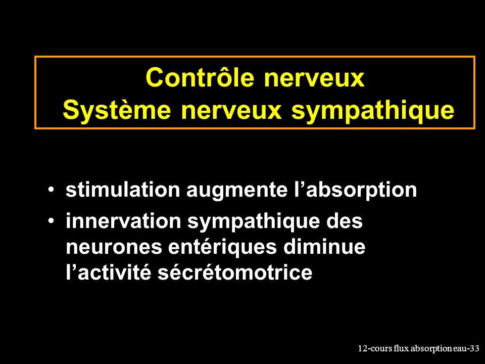 12-cours flux absorption eau-33 Contrôle nerveux Système nerveux sympathique stimulation augmente labsorption innervation sympathique des neurones ent