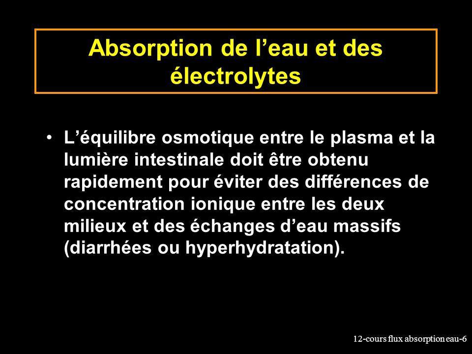 12-cours flux absorption eau-6 Absorption de leau et des électrolytes Léquilibre osmotique entre le plasma et la lumière intestinale doit être obtenu