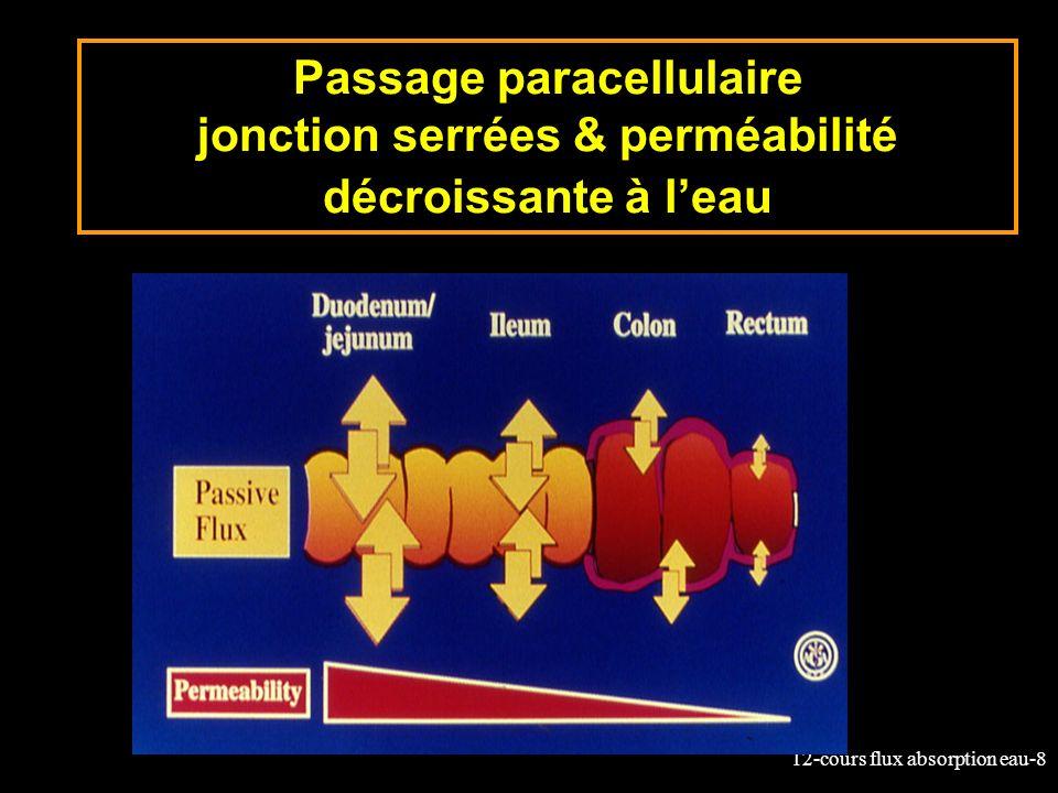 12-cours flux absorption eau-8 Passage paracellulaire jonction serrées & perméabilité décroissante à leau