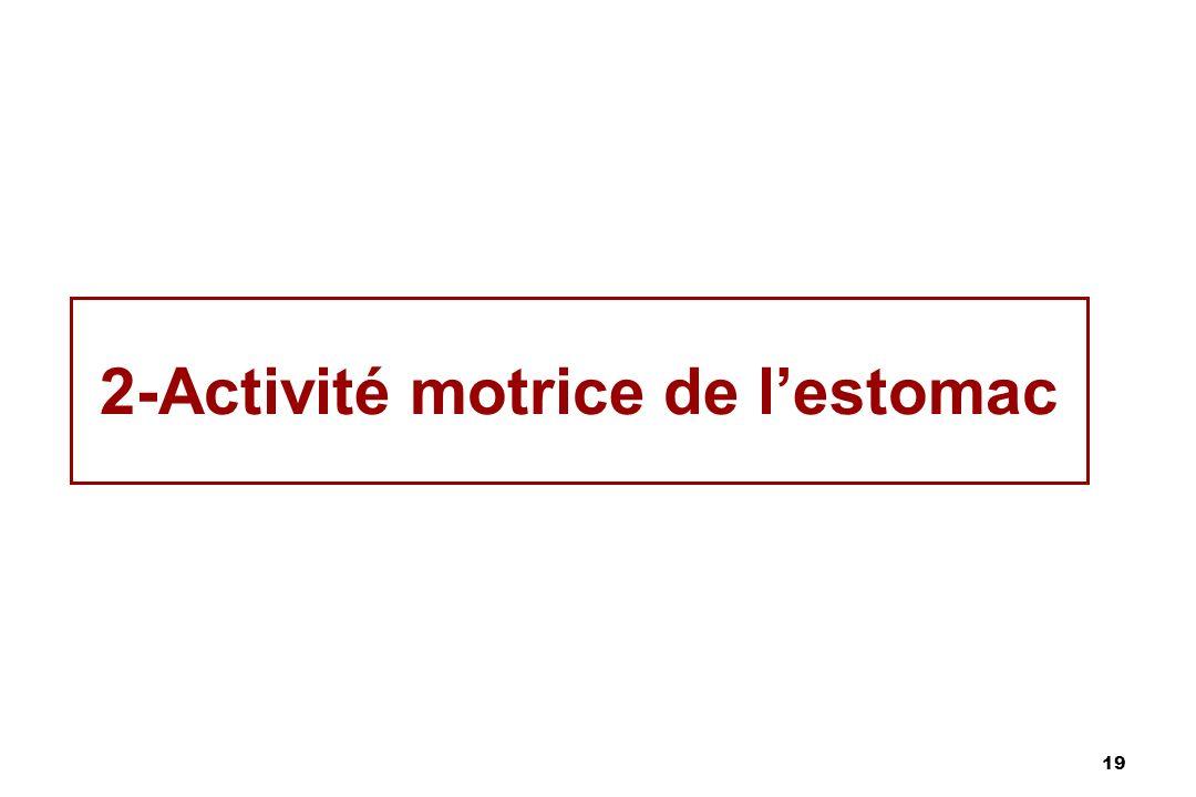19 2-Activité motrice de lestomac