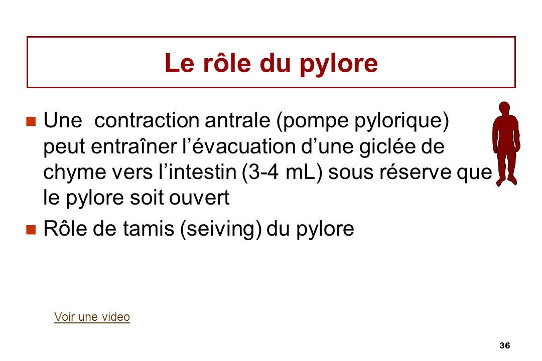 36 Le rôle du pylore Une contraction antrale (pompe pylorique) peut entraîner lévacuation dune giclée de chyme vers lintestin (3-4 mL) sous réserve qu