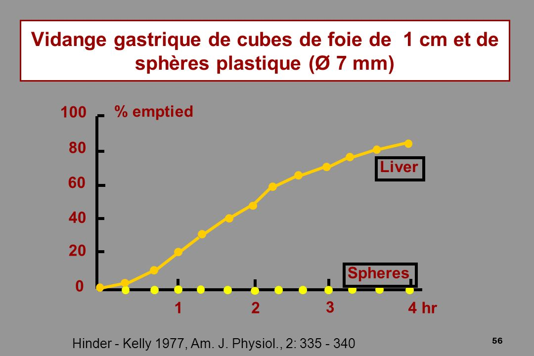 56 Vidange gastrique de cubes de foie de 1 cm et de sphères plastique (Ø 7 mm) Hinder - Kelly 1977, Am. J. Physiol., 2: 335 - 340 Liver Spheres 100 %