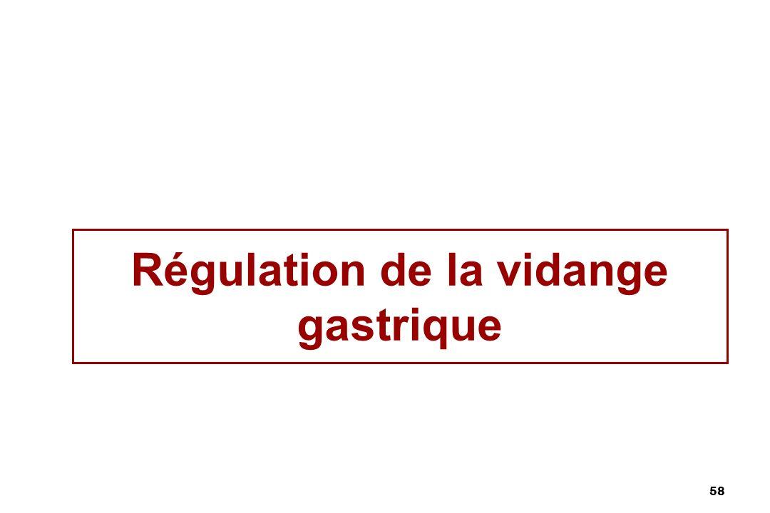 58 Régulation de la vidange gastrique