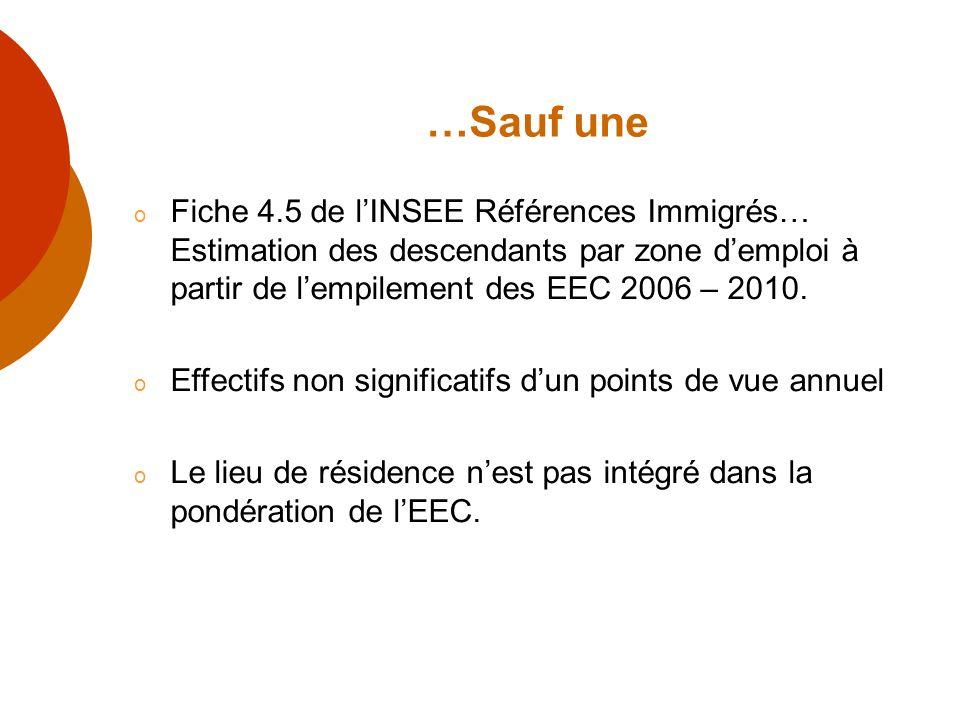 …Sauf une o Fiche 4.5 de lINSEE Références Immigrés… Estimation des descendants par zone demploi à partir de lempilement des EEC 2006 – 2010. o Effect