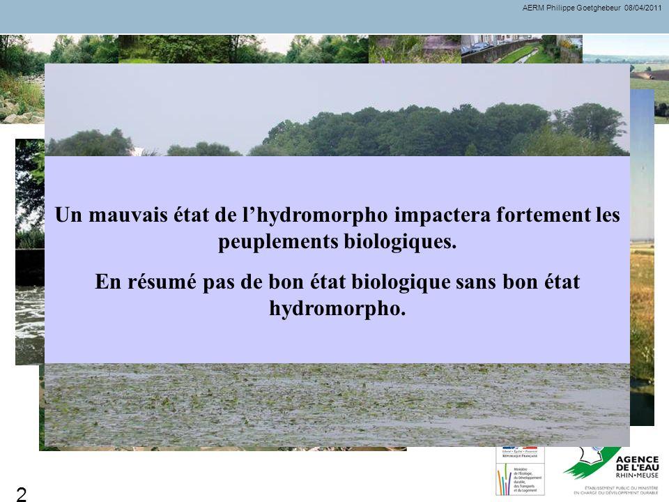 Des dégradations généralisées Des milieux banalisés moins fonctionnels La DCE ne prévoit pas dobjectifs spécifiques sur lhydromorphologie. Par contre,