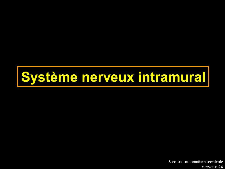 8-cours--automatisme controle nerveux-24 Système nerveux intramural
