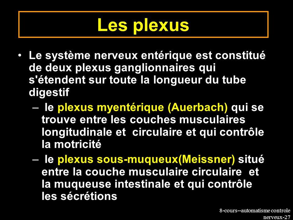 8-cours--automatisme controle nerveux-27 Les plexus Le système nerveux entérique est constitué de deux plexus ganglionnaires qui s'étendent sur toute