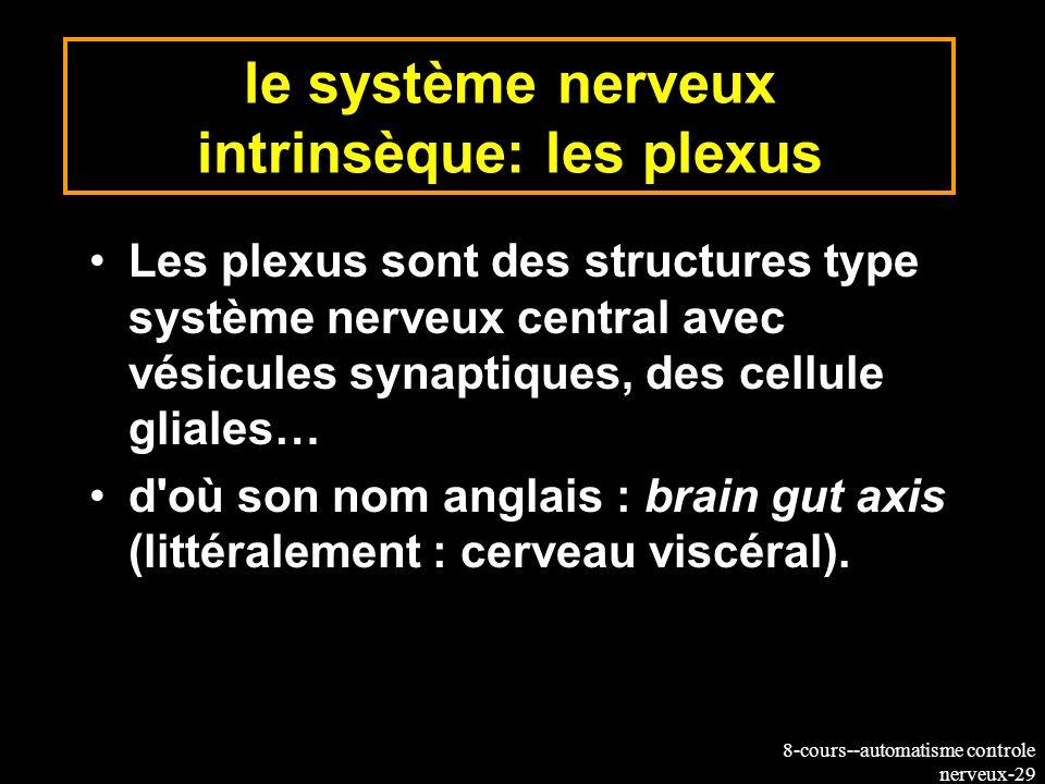 8-cours--automatisme controle nerveux-29 le système nerveux intrinsèque: les plexus Les plexus sont des structures type système nerveux central avec v