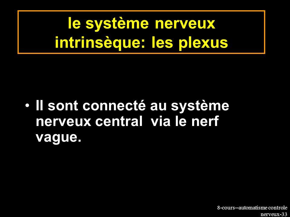8-cours--automatisme controle nerveux-33 le système nerveux intrinsèque: les plexus Il sont connecté au système nerveux central via le nerf vague.