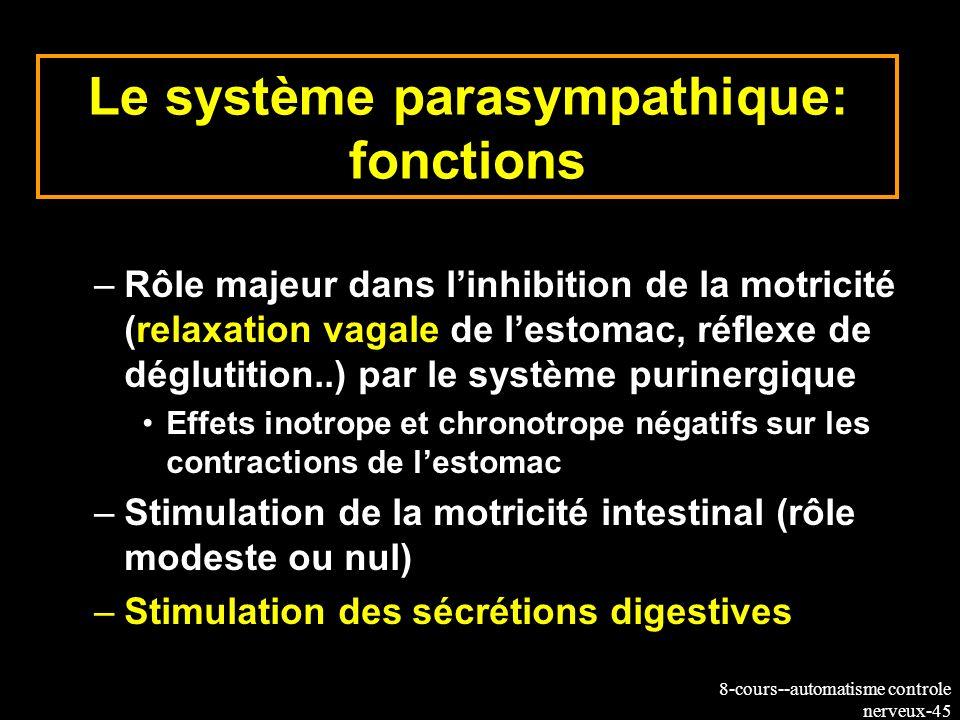 8-cours--automatisme controle nerveux-45 Le système parasympathique: fonctions –Rôle majeur dans linhibition de la motricité (relaxation vagale de les