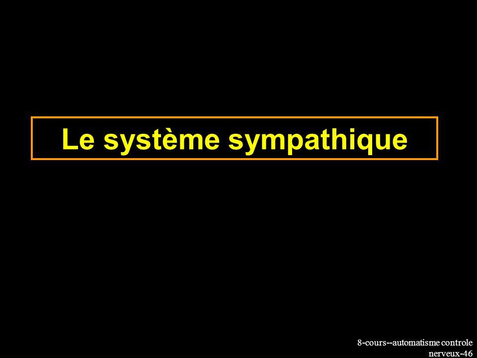 8-cours--automatisme controle nerveux-46 Le système sympathique