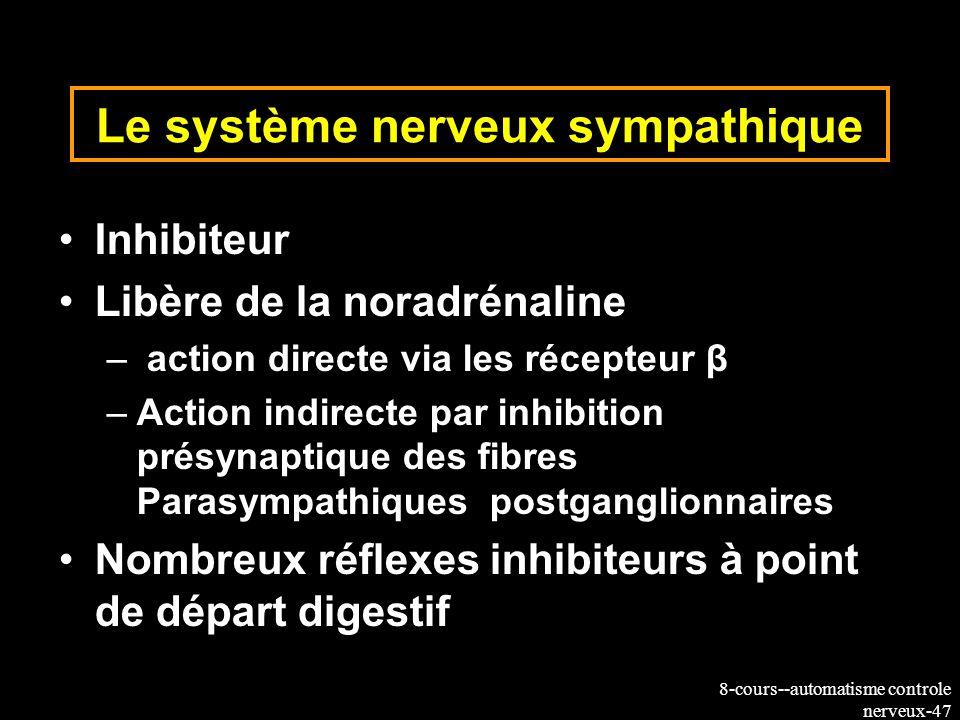 8-cours--automatisme controle nerveux-47 Le système nerveux sympathique Inhibiteur Libère de la noradrénaline – action directe via les récepteur β –Ac