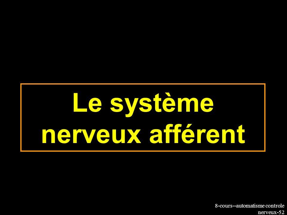 8-cours--automatisme controle nerveux-52 Le système nerveux afférent