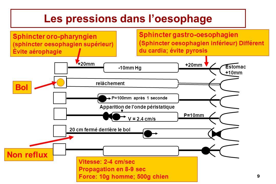 10 Péristaltisme œsophagien Péristaltisme: vague dun anneau de constriction luminale précédée dune zone de relâchement, assurant une propagation distale du bol