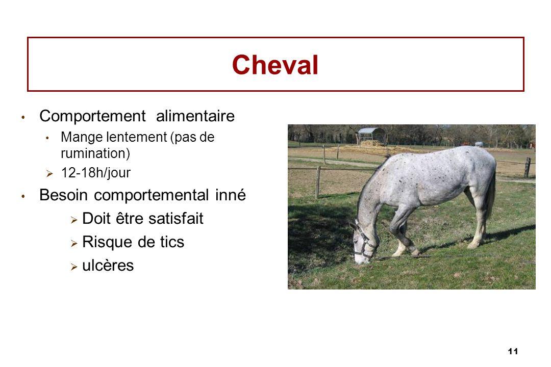 11 Cheval Comportement alimentaire Mange lentement (pas de rumination) 12-18h/jour Besoin comportemental inné Doit être satisfait Risque de tics ulcèr
