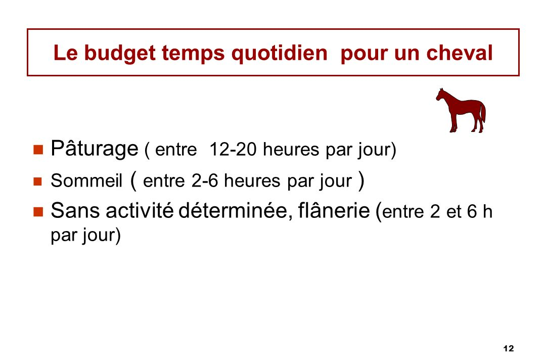 12 Le budget temps quotidien pour un cheval Pâturage ( entre 12-20 heures par jour) Sommeil ( entre 2-6 heures par jour ) Sans activité déterminée, flânerie ( entre 2 et 6 h par jour)