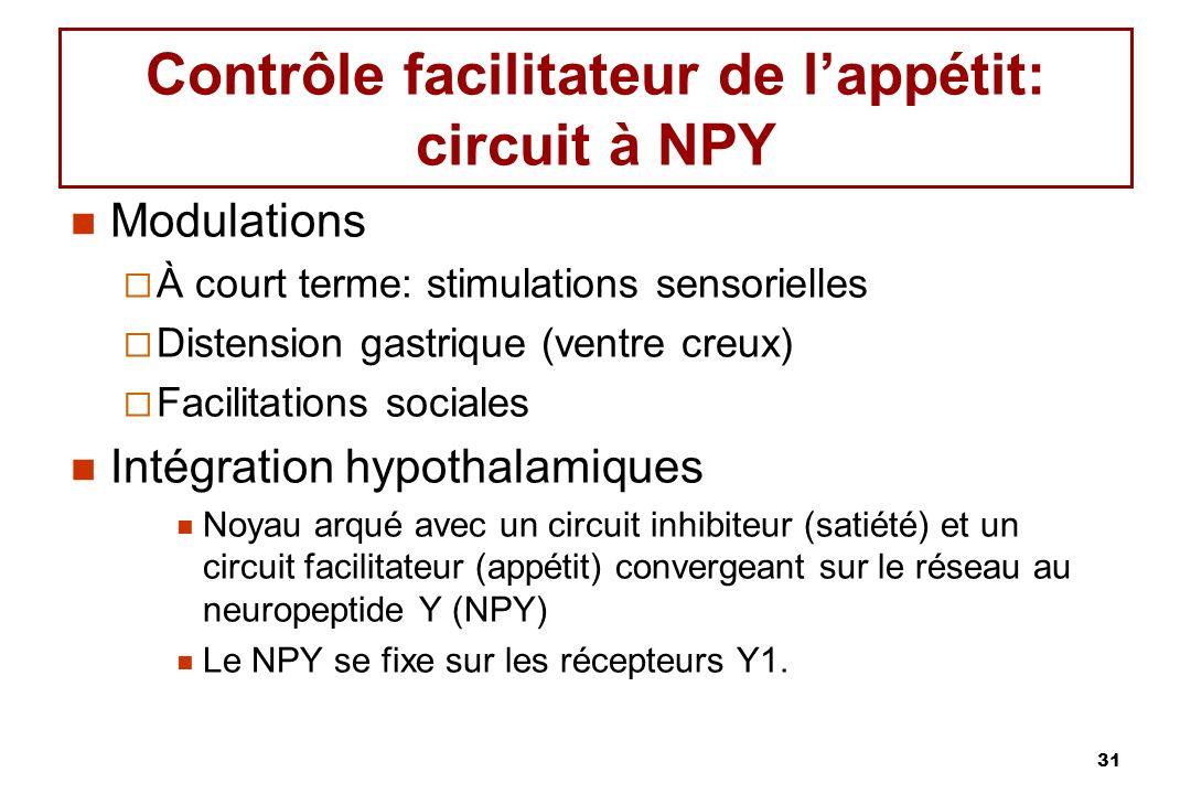 31 Contrôle facilitateur de lappétit: circuit à NPY Modulations À court terme: stimulations sensorielles Distension gastrique (ventre creux) Facilitations sociales Intégration hypothalamiques Noyau arqué avec un circuit inhibiteur (satiété) et un circuit facilitateur (appétit) convergeant sur le réseau au neuropeptide Y (NPY) Le NPY se fixe sur les récepteurs Y1.