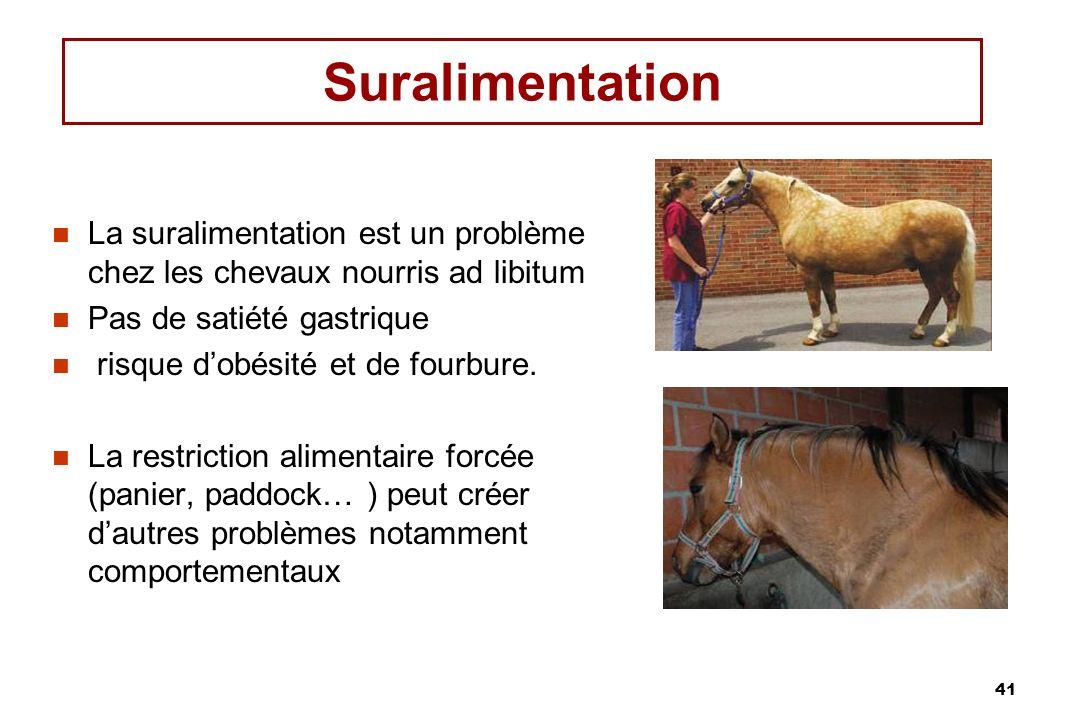 41 Suralimentation La suralimentation est un problème chez les chevaux nourris ad libitum Pas de satiété gastrique risque dobésité et de fourbure.