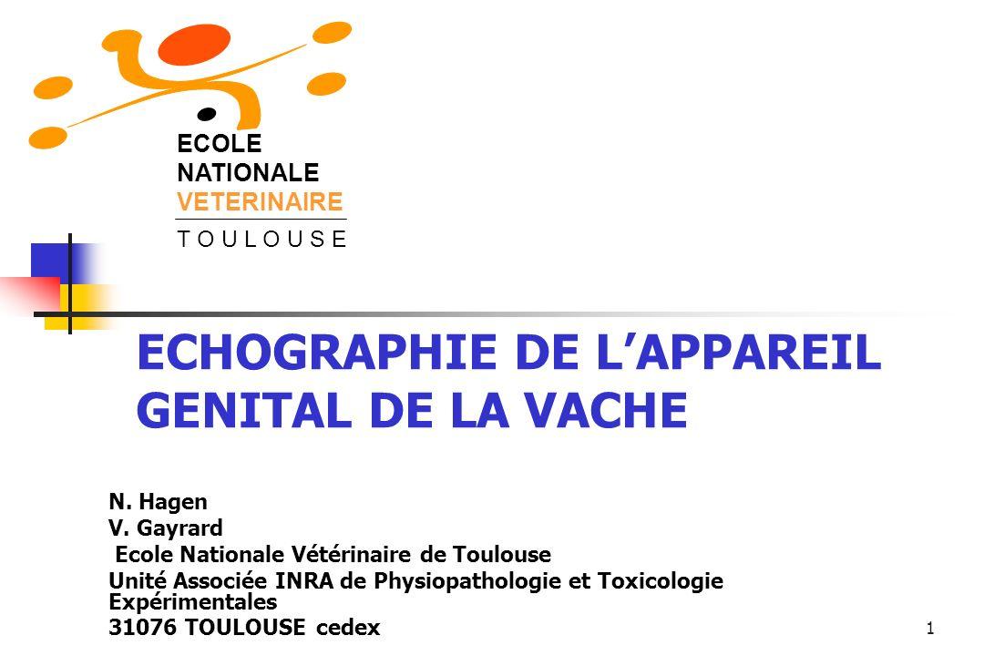 1 ECOLE NATIONALE VETERINAIRE T O U L O U S E ECHOGRAPHIE DE LAPPAREIL GENITAL DE LA VACHE N. Hagen V. Gayrard Ecole Nationale Vétérinaire de Toulouse