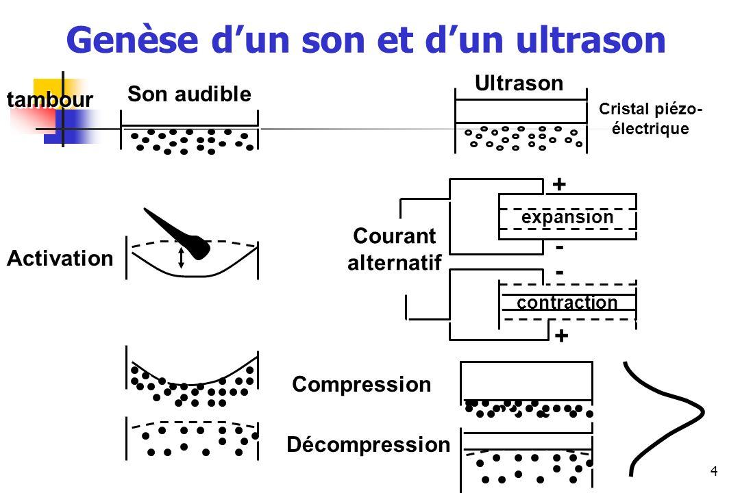 35 Diamètre VE (mm) Stade (jours de gestation) 20 22 25 30 40 50 60 Longueur embyon (mm) 2-3 3-5 10 18-20 25 35-40 50-60 3 3 5 5 8-9 12 22 32 69 Développement du blastocyste bovin
