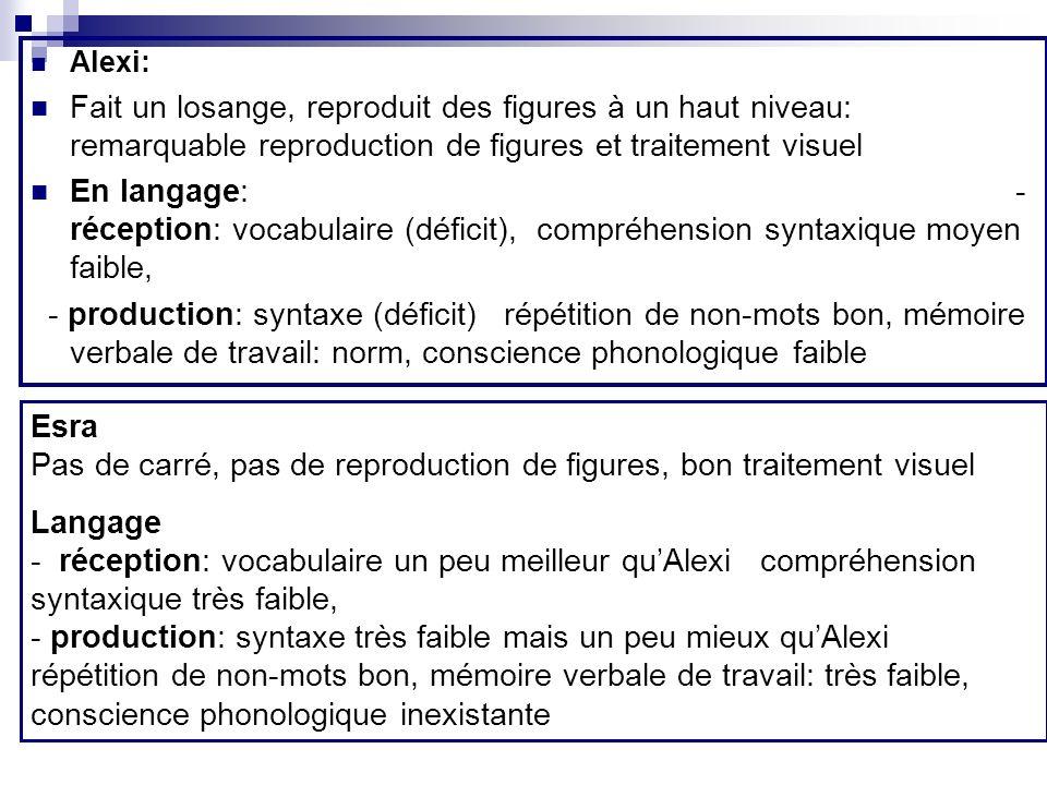 Alexi: Fait un losange, reproduit des figures à un haut niveau: remarquable reproduction de figures et traitement visuel En langage: - réception: voca