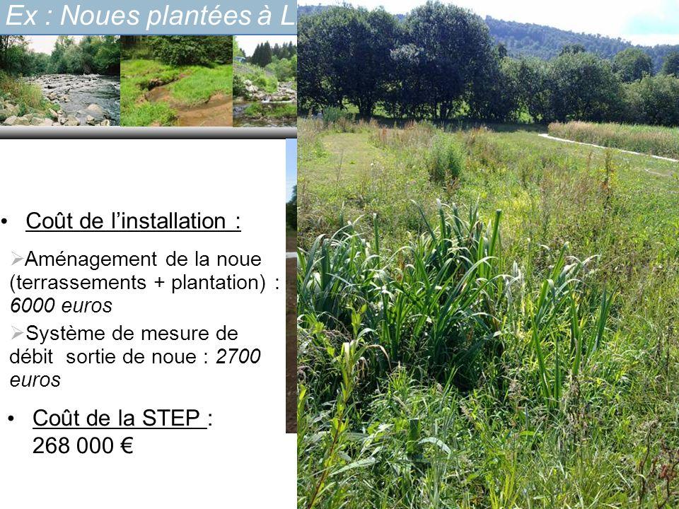 Aménagement de la noue (terrassements + plantation) : 6000 euros Système de mesure de débit sortie de noue : 2700 euros Coût de linstallation : Coût d