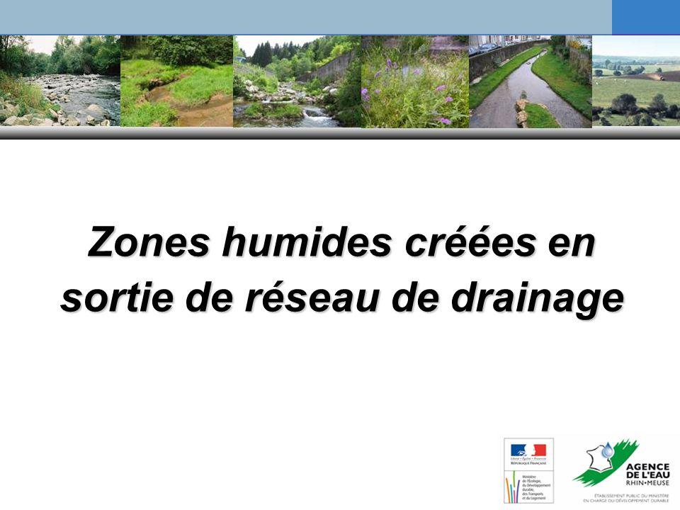 Zones humides créées en sortie de réseau de drainage