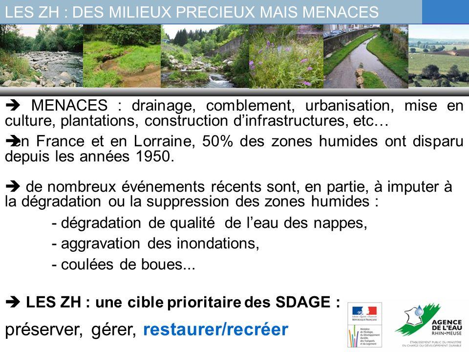 MENACES : drainage, comblement, urbanisation, mise en culture, plantations, construction dinfrastructures, etc… en France et en Lorraine, 50% des zone
