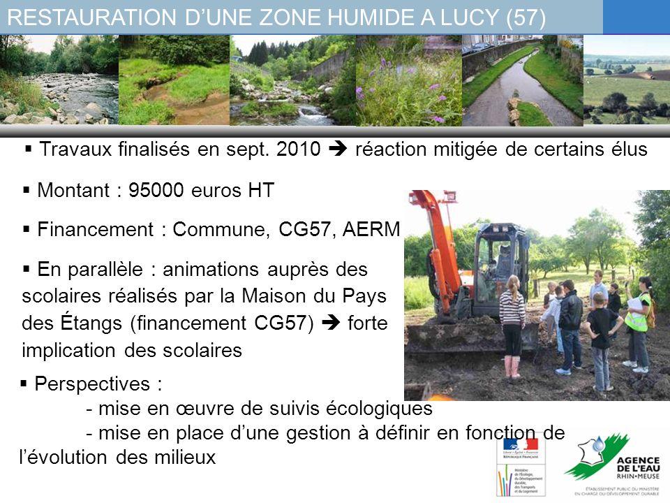 Montant : 95000 euros HT Financement : Commune, CG57, AERM En parallèle : animations auprès des scolaires réalisés par la Maison du Pays des Étangs (f