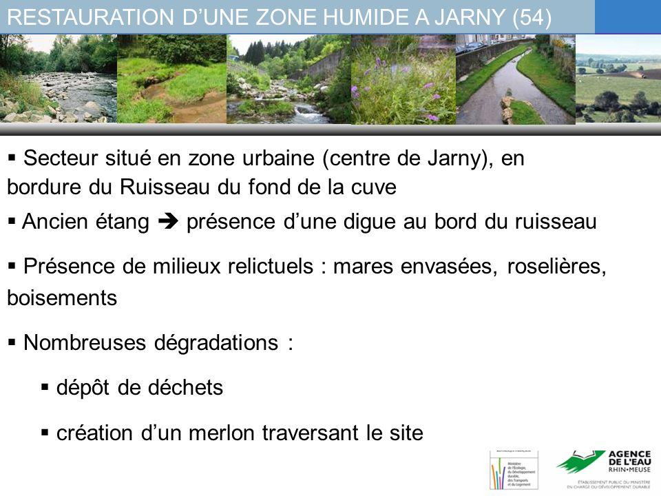 RESTAURATION DUNE ZONE HUMIDE A JARNY (54) En 2005 : un projet daménagement paysager porté par la Ville, sans prise en compte des milieux humides (comblement partiel, déconnexion définitive du cours deau) 2007 : modification du projet restauration dune zone humide, en lien avec le Rougewald : Création de 2 déversoirs Remise en état de lexutoire Réouverture du site Diversification de la topographie Plantations / réensemencements