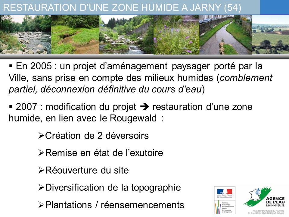 RESTAURATION DUNE ZONE HUMIDE A JARNY (54) En 2005 : un projet daménagement paysager porté par la Ville, sans prise en compte des milieux humides (com