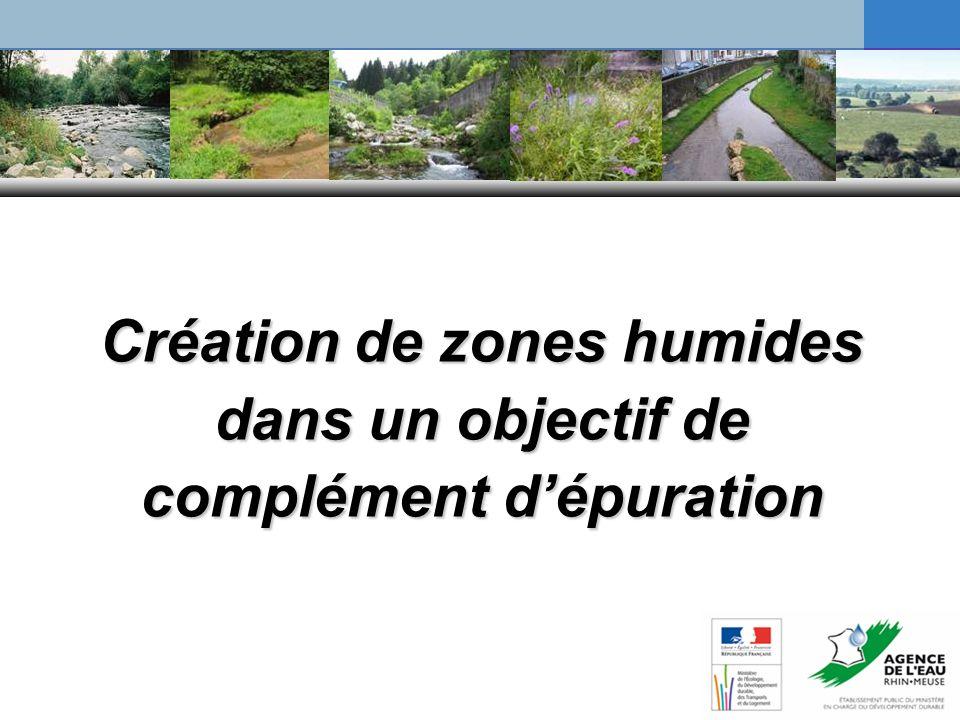 Création de zones humides dans un objectif de complément dépuration