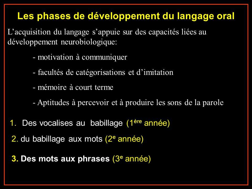 Les phases de développement du langage oral Lacquisition du langage sappuie sur des capacités liées au développement neurobiologique: - motivation à c