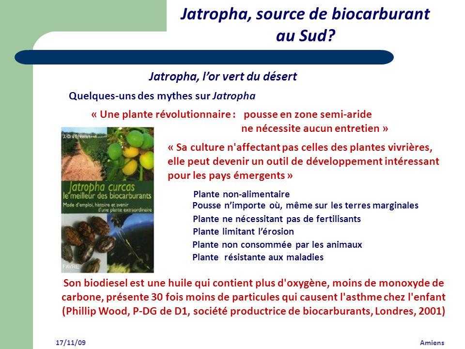 Jatropha, source de biocarburant au Sud? Jatropha, lor vert du désert 17/11/09 Amiens Quelques-uns des mythes sur Jatropha Pousse nimporte où, même su